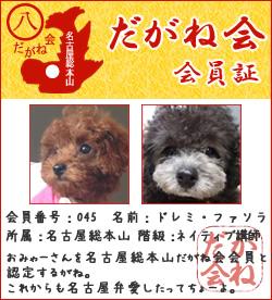 dagane-nagoya45.jpg