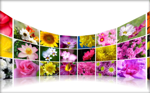 3D Wall Flash Gallery