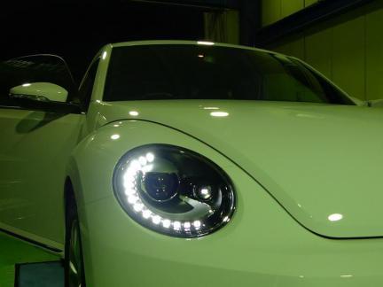 beetle_12_10_06_P1.jpg