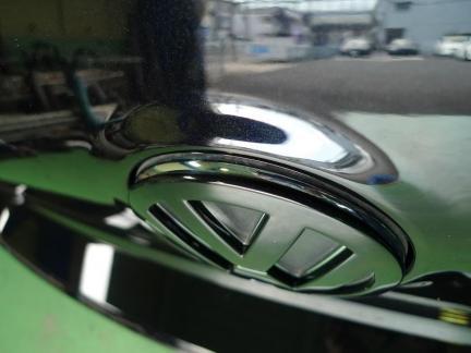 emblem12_06_18_P5.jpg