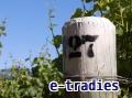 etradies