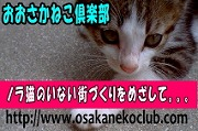 大阪ねこ倶楽部