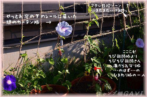110722_5209.jpg