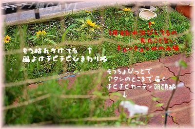 110728_5368.jpg