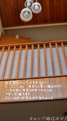 120403_3023.jpg