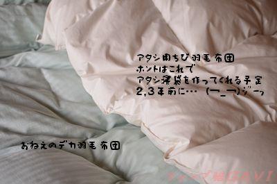 120405_3084.jpg
