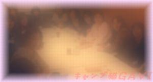 120408_3316.jpg