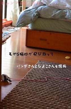 DSC_3687.jpg