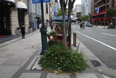 201410OsakaKobe-29.jpg