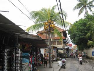 Bali0404.JPG