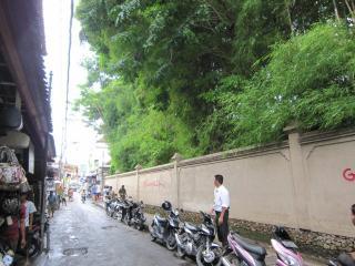 Bali0405.JPG