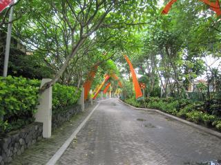 Bali0420.JPG