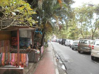 Bali0720.JPG