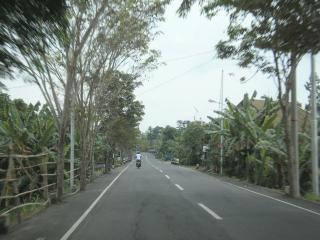 Bali0902.JPG