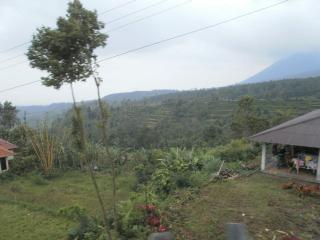 Bali0914.JPG
