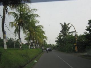 Bali0931.JPG