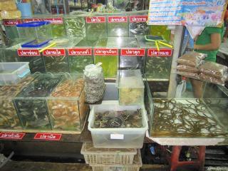 Pattaya1009-0517.JPG