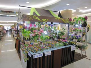 Pattaya1009-0708.JPG