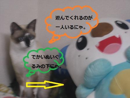 20121025012.jpg