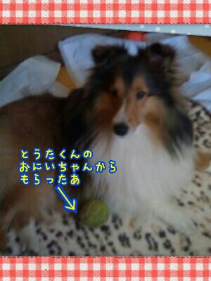 fc2_2013-11-19_11-58-29-412.jpg