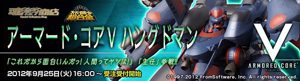 bnr_acv-hman_A01_fix.jpg