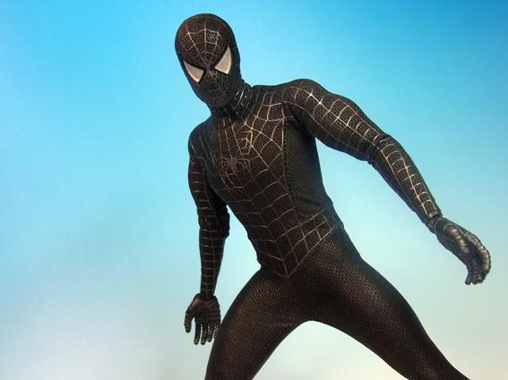 spiderblackRIMG2379.jpg