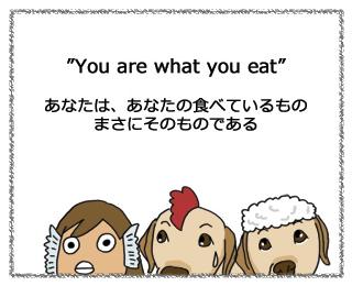 羊の国のラブラドール絵日記、you are what you eat1