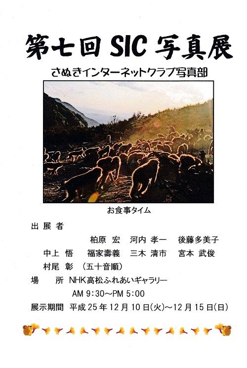 IMG_20131111_0001.jpg