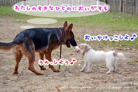 131117_yuasa12.jpg