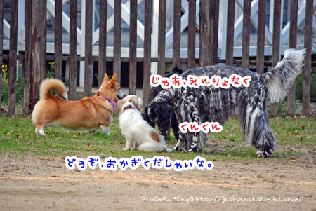 131117_yuasa2.jpg