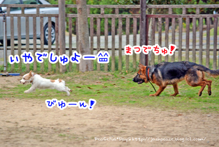 131117_yuasa8.jpg