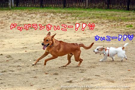 131121_yuasa.jpg