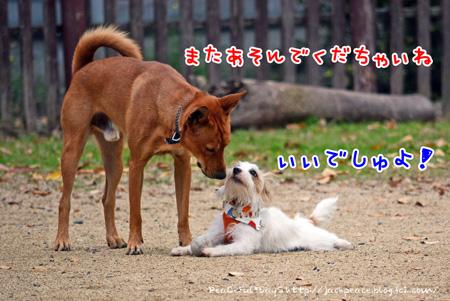 131121_yuasa4.jpg
