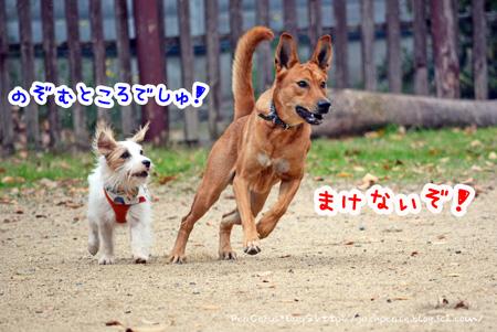 131121_yuasa5.jpg