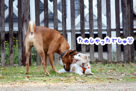 131121_yuasa7.jpg