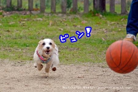 131127_yuasa2.jpg