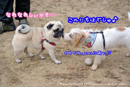 131127_yuasa6.jpg