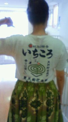 NEC_0837.jpg