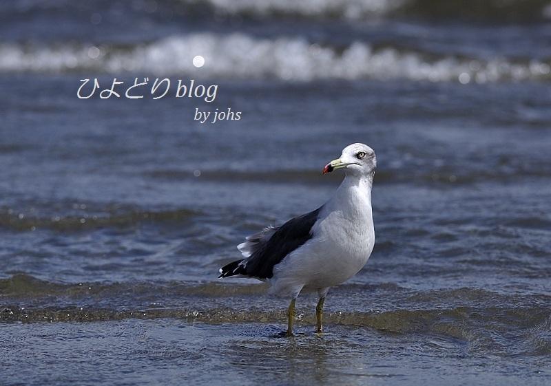 20120917_103929_01.jpg
