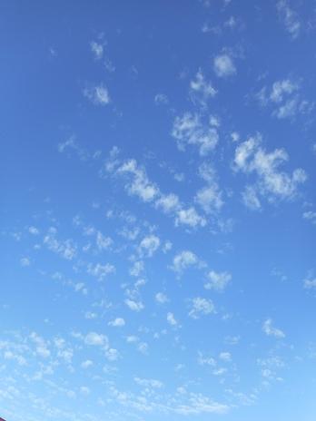 けさの雲 ①
