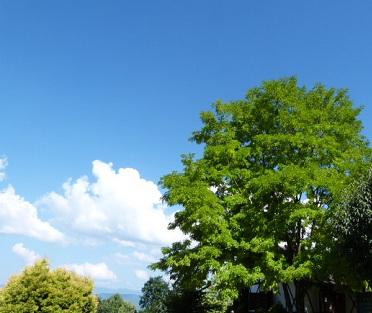 安曇野スケッチ③信州の夏の雲