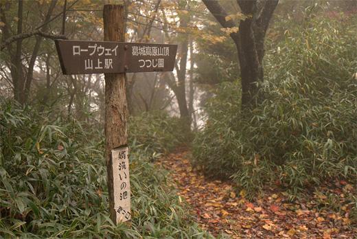 20111106-11.jpg