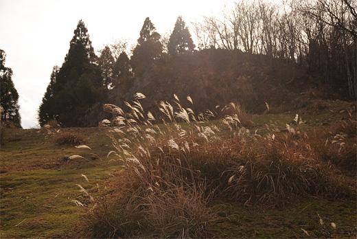 20111112-30.jpg