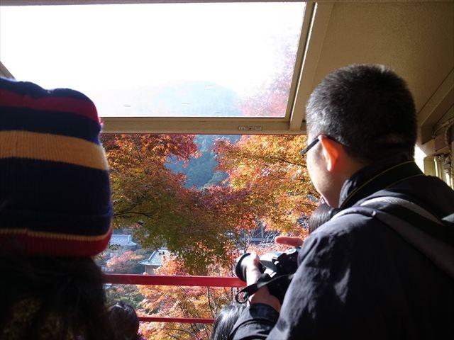 紅葉の嵯峨野トロッコ列車