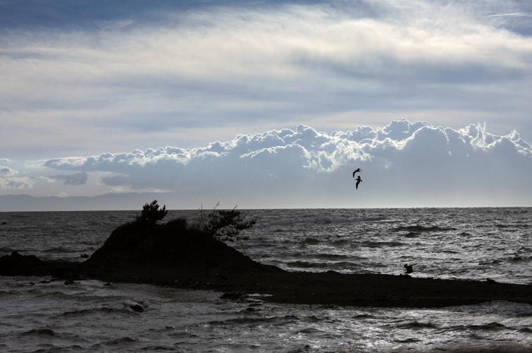 IMG_02雲の波と戯れて