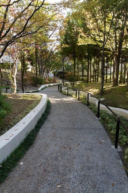 平城右京団地の小道