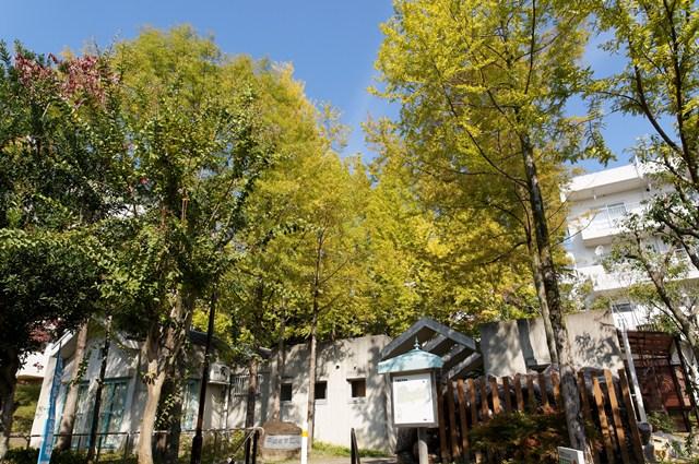 平城右京団地の集会所と植栽