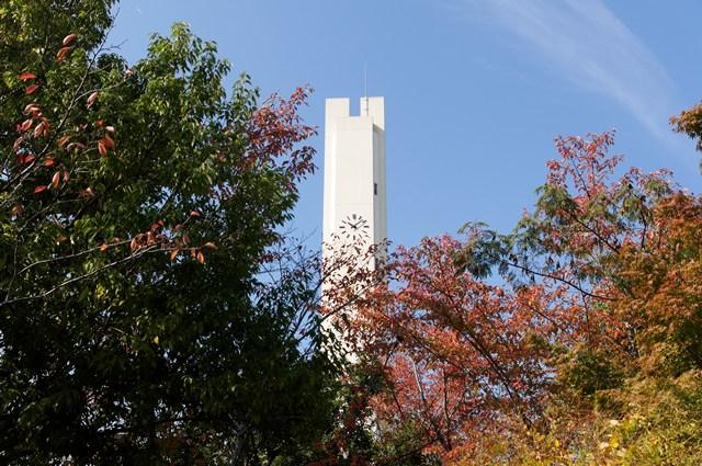 平城右京団地の雑木林と給水塔