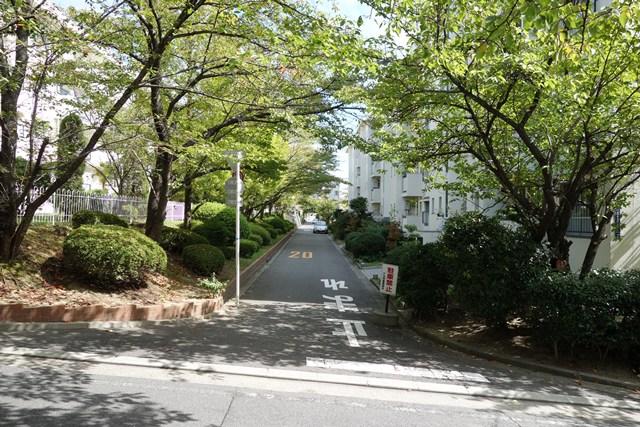 府公社香里三井F団地の坂道