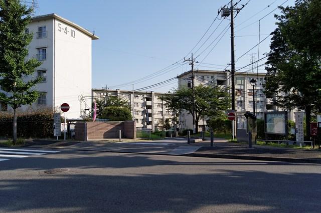 tsurukawadanchi-DSC01729_DxO.jpg